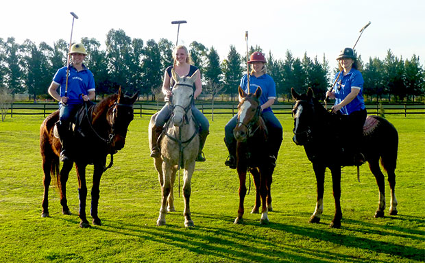 Learn Horse Polo in Horse Argentina
