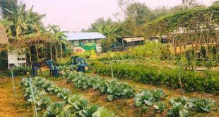 Thailand Farm Stay