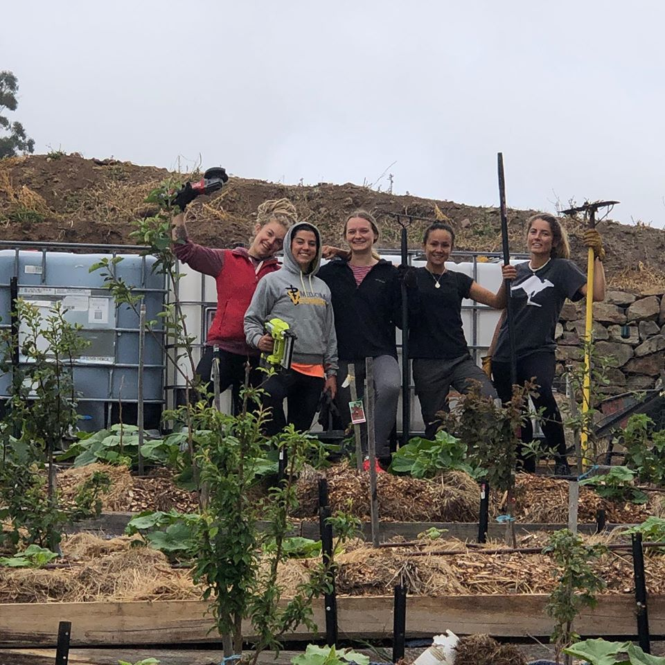 Volunteer on our Permaculture Project in Tasmania (Australia)