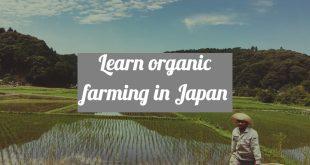 Organic farming in Japan