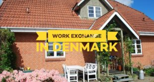 Working holiday in Denmark